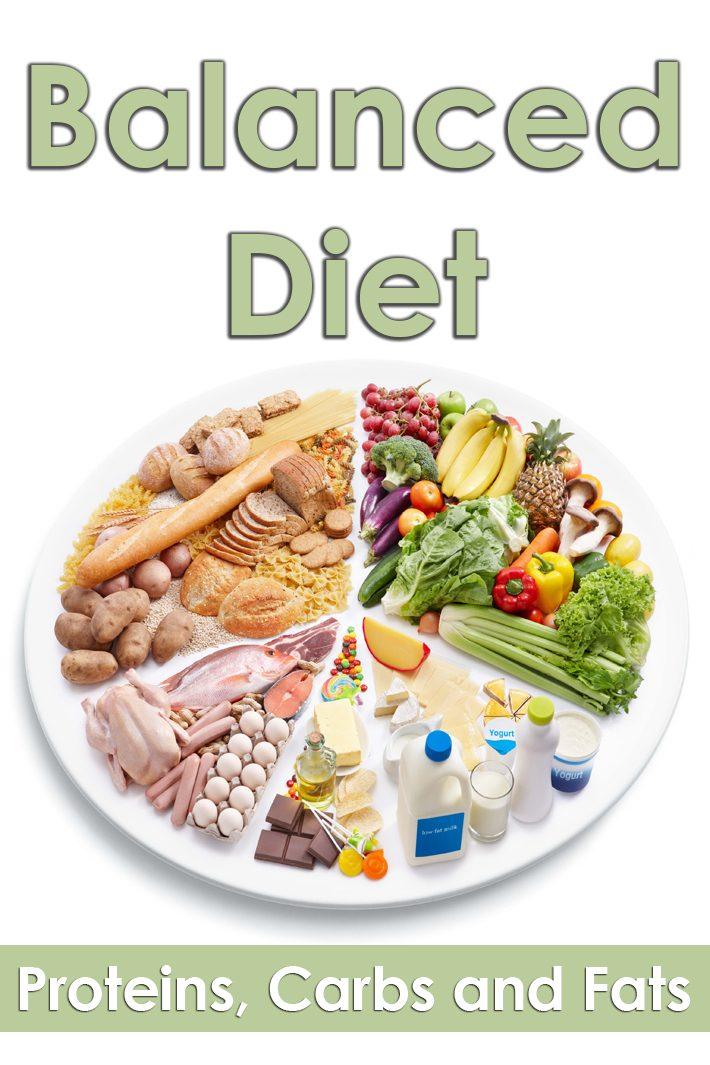healthy diet fat protein