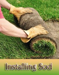 DIY - How to Install Sod for a New Lawn