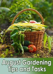 Garden Almanac - August Gardening Tips and Tasks