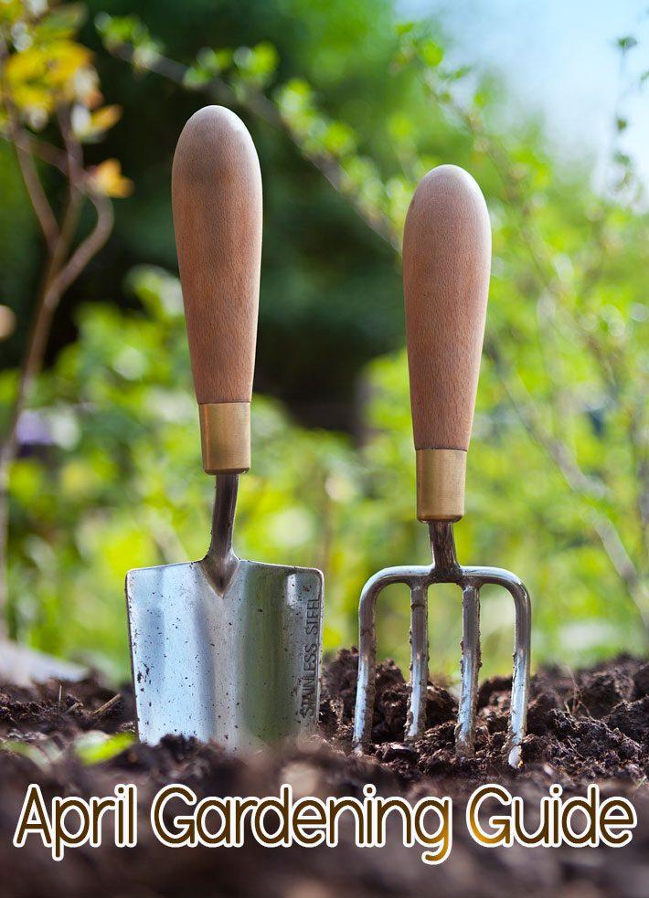 April Gardening Guide: April Garden Tasks in Your Region
