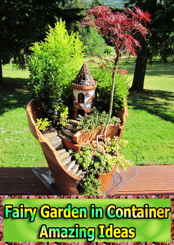 Fairy Garden in Container – Amazing Ideas
