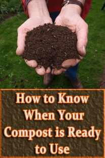How to Know When Your Compost is Ready to Use